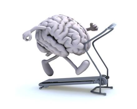 exercise brain2